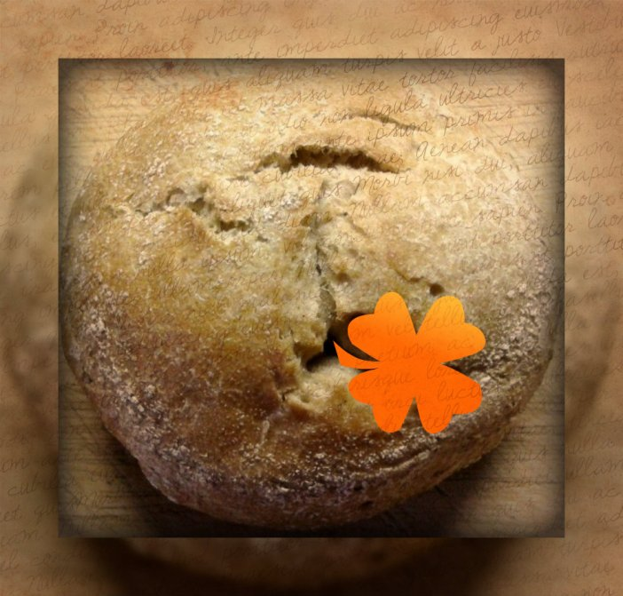 bäckerblume